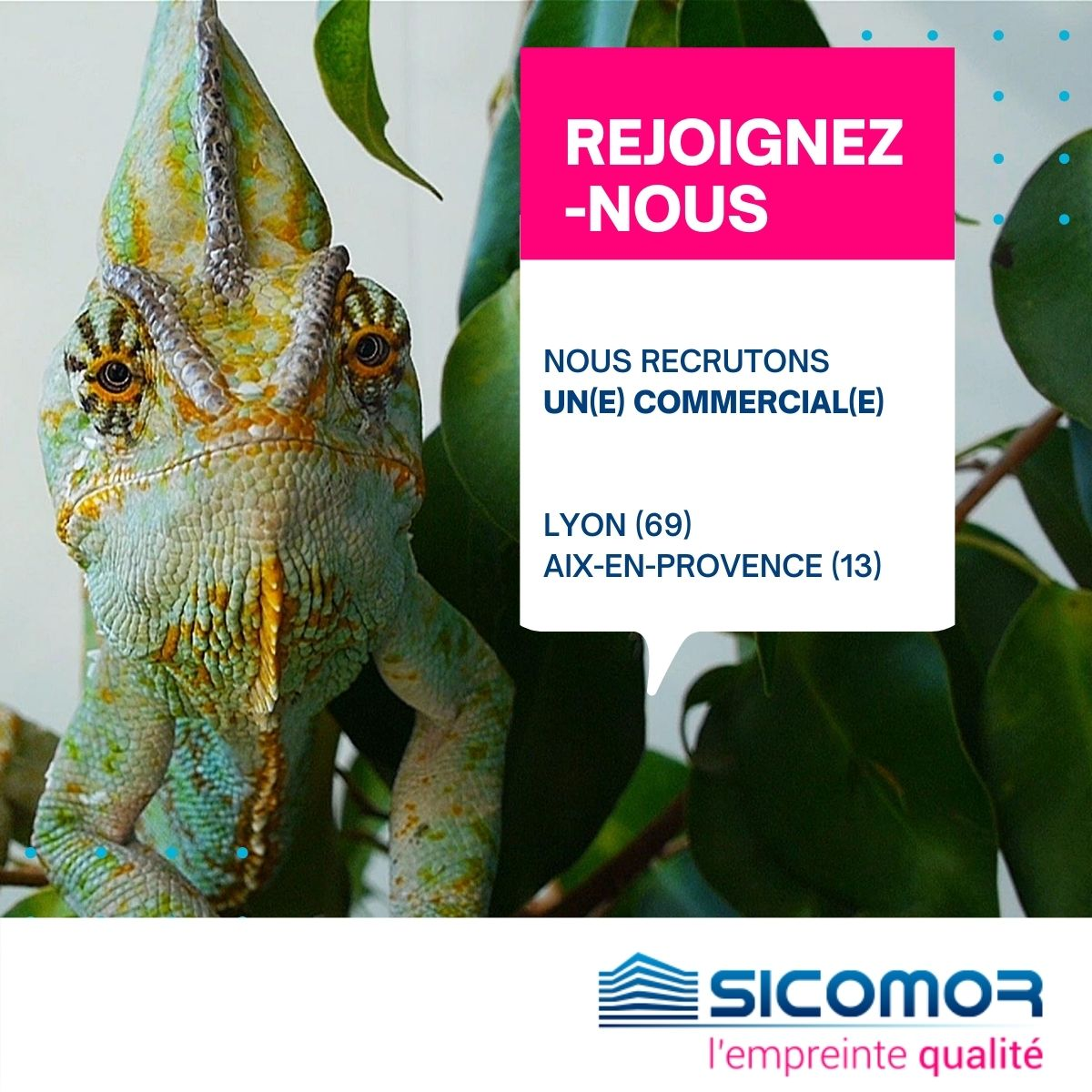 Image recrutement commercial